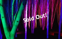 AA2014_Soldout