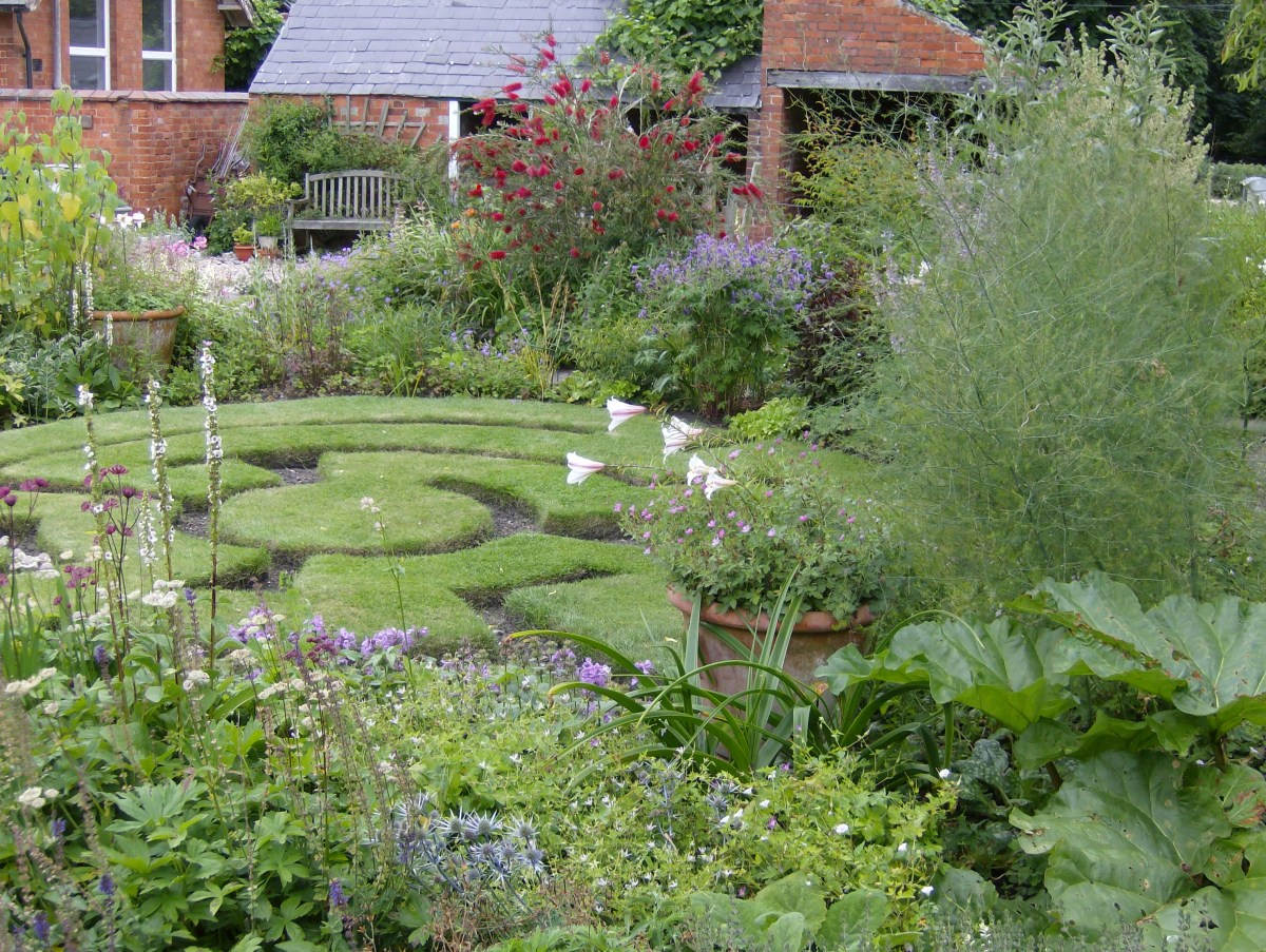 A Year In The Life Of A Cottage Garden Andrew Sankey