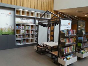 Bibliotheekkast-web
