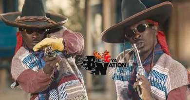 Shatta Wale Gringo Music Video directed by Sesan