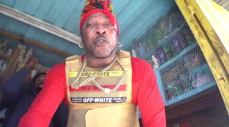 Elephant Man Gun Anthem Music Video