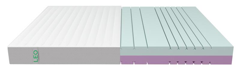 leo-transpa-big-neu-echte-farben