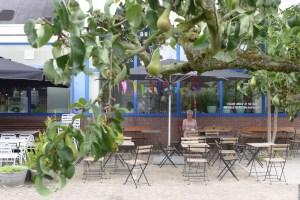Kromme Haring terras met perenboom