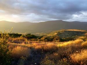 gistredo desde el monte de Labaniego