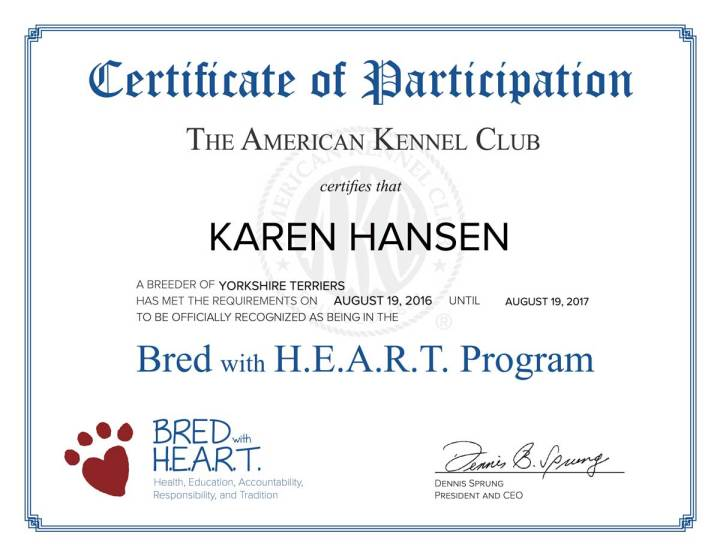 AKC Certificate for Rocky Mountain Biewer Terriers