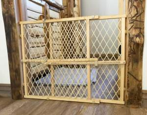 Biewer Puppy Safety Gate