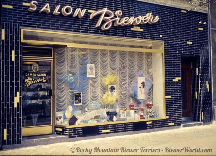 Hair Dresser Salon Biewer