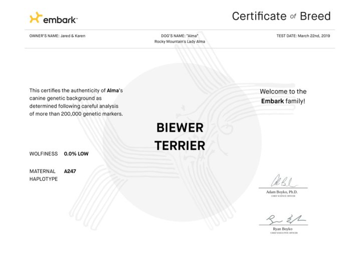Embark Breed Certificates for Rocky Mountain Biewer Terriers