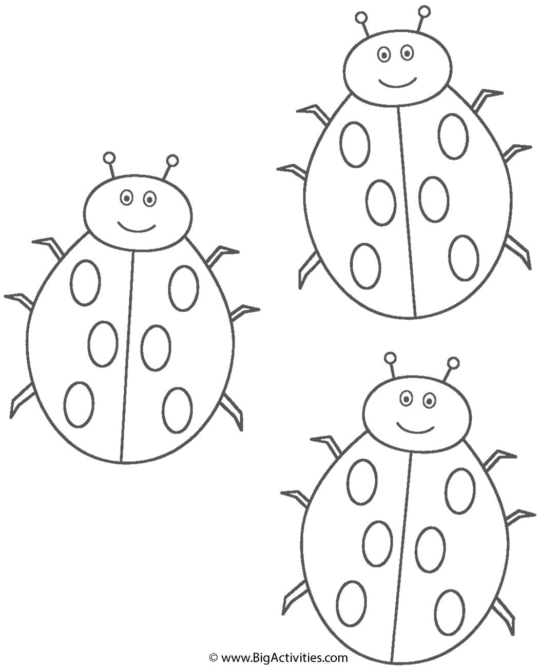 Three Ladybugs