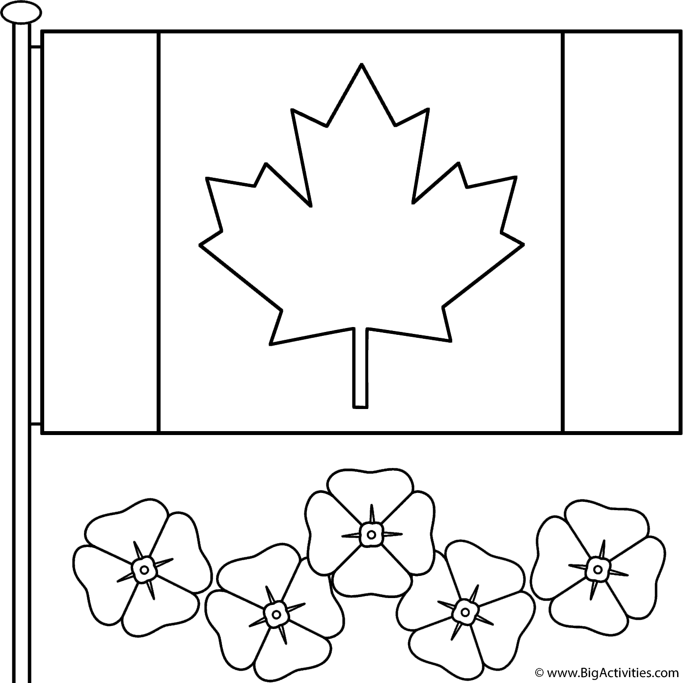 Canadian Flag With Poppies