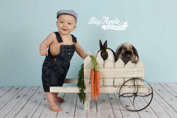 NYC Photographer Baby Chicks & Bunnies