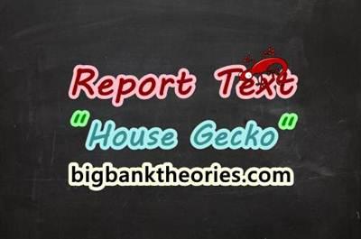 Report Text Bahasa Inggris Tentang Cicak
