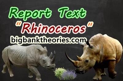 Report Text Bahasa Inggris Tentang Badak