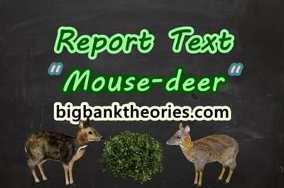Report Text Bahasa Inggris Tentang Kancil