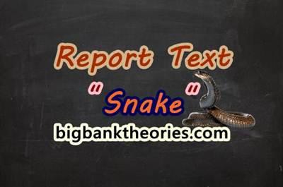 Report Text Bahasa Inggris Tentang Ular
