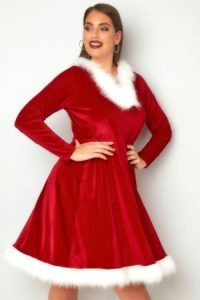Mrs Claus style red dress with white fur trim.