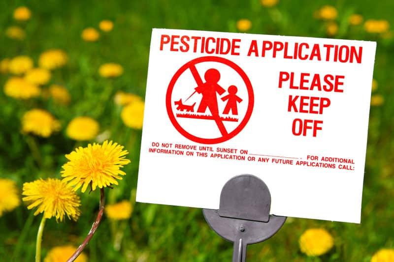 pesticidas en el césped