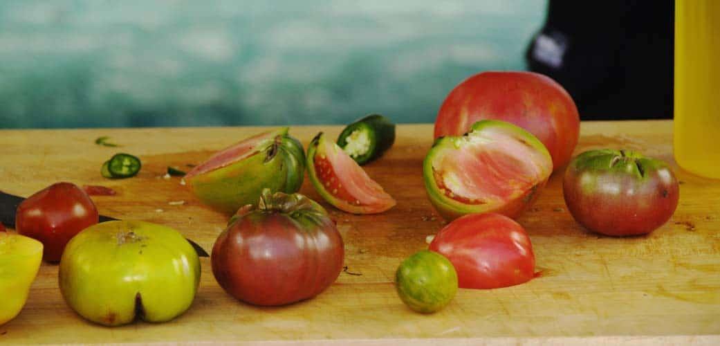 Growing Tomatoes Watering Harvesting Saving Seed