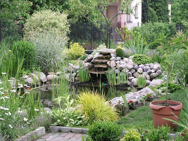 Superieur Garden Pond Design