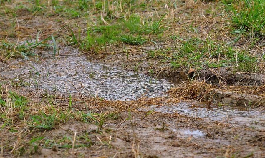 problemas de drenaje en el patio