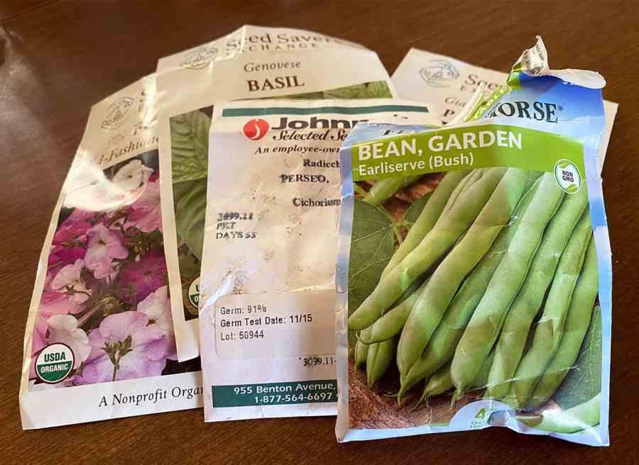 viabilidad de semillas de jardín