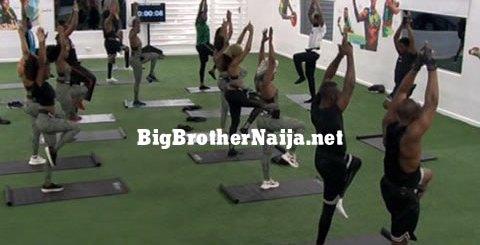 Big Brother Naija 2019 Live Feed Blog Updates