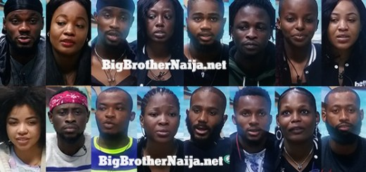 Big Brother Naija 2020 Week 3 Nominated Housemates