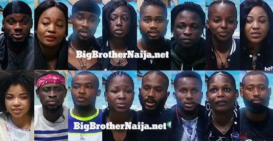 Big Brother Naija 2020 Week 3 Nominated Housemates