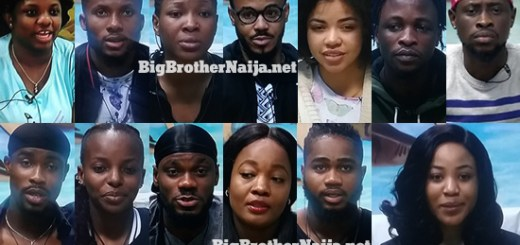 Big Brother Naija 2020 Week 5 Nominated Housemates
