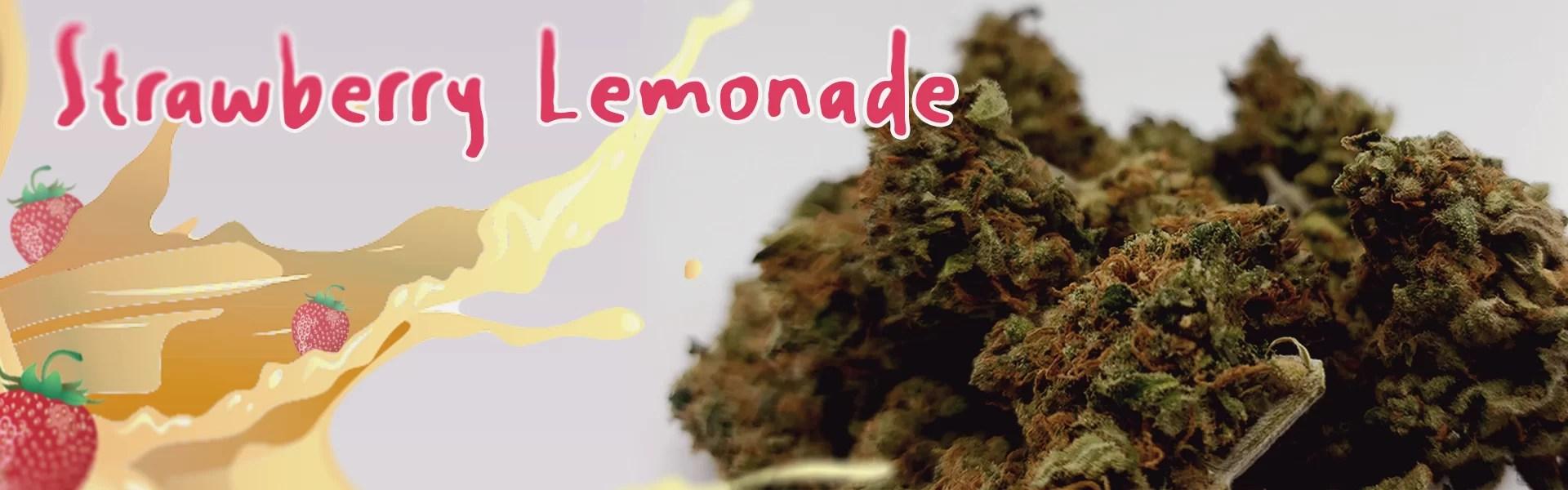 Strawberry Lemonaid