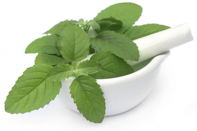 Basil-- for acidity