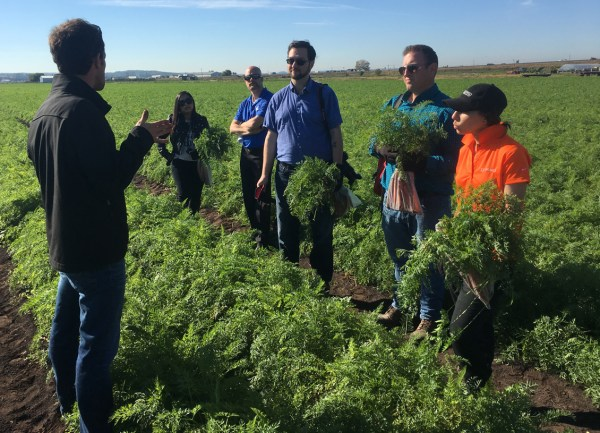 farm ryan talking carrots