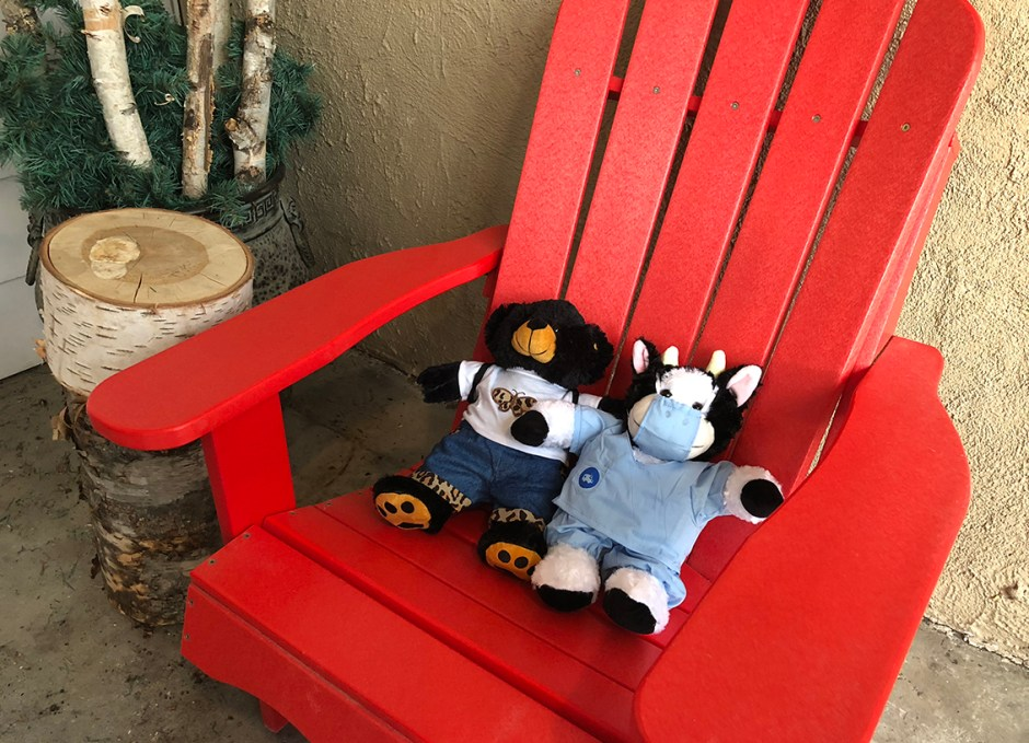 activities build a bear on muskoka chair