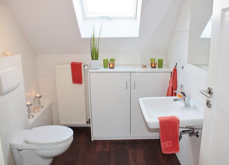house-fails toilet