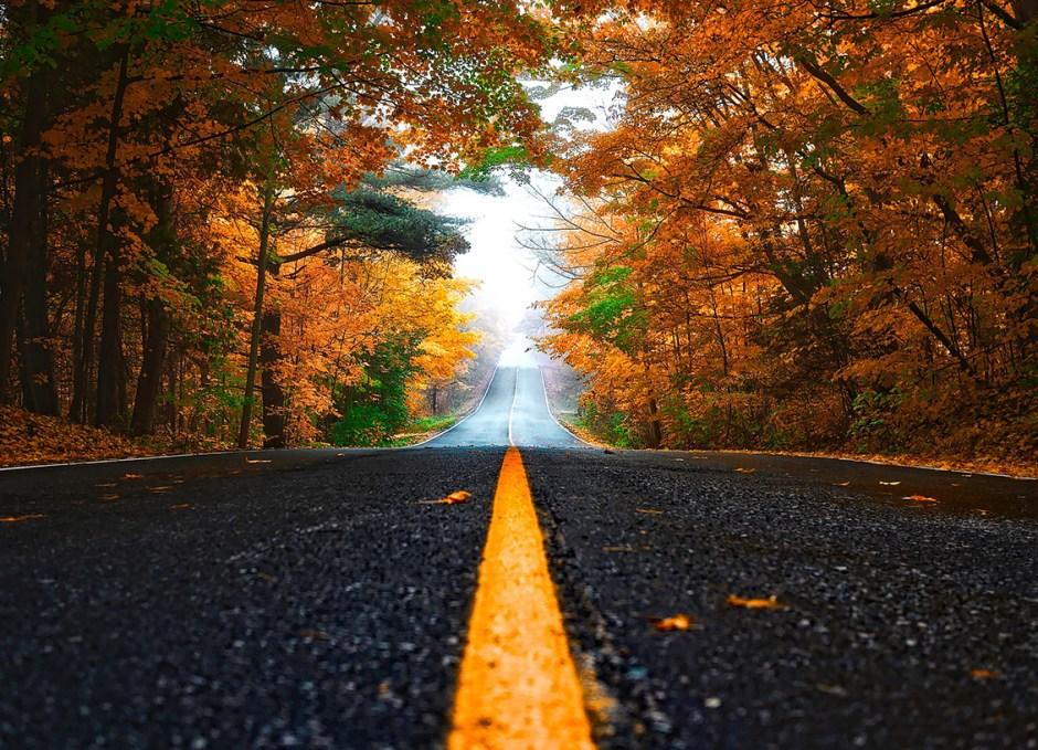 auto accident autumn road