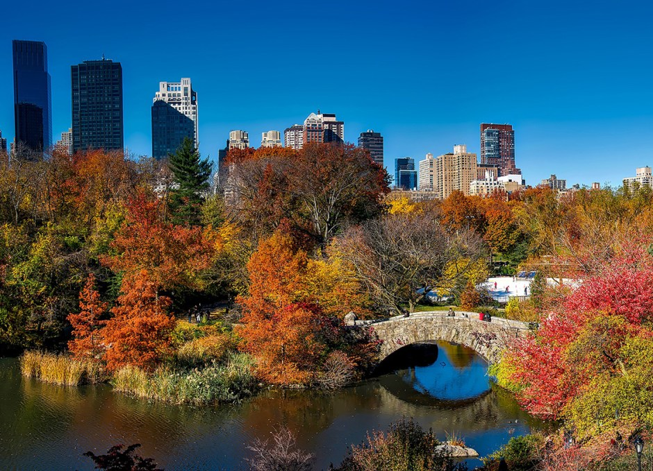 new york central park in fall