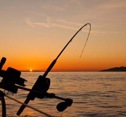 Let's Go Fishing: A Fun Outing For The Whole Family