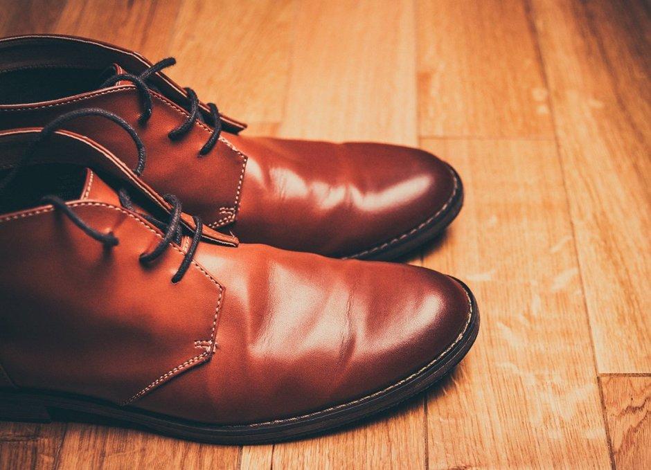 Footwear brown shoes