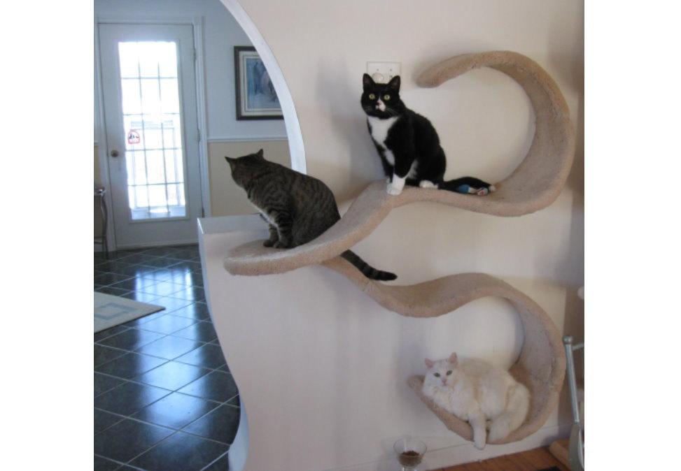 Wall Mounted Cat Shelf