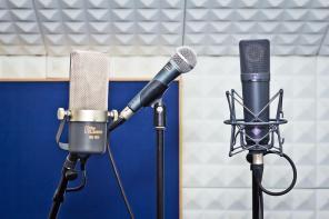 Mikrofontypen