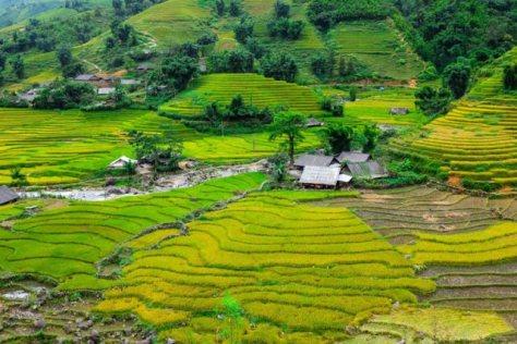 muong-hoa-valley