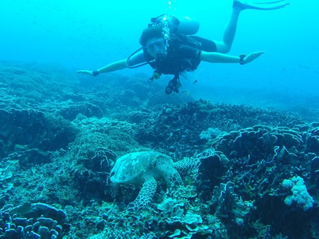 diving in gili islands