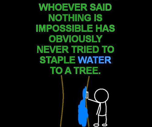 staple water to a tree