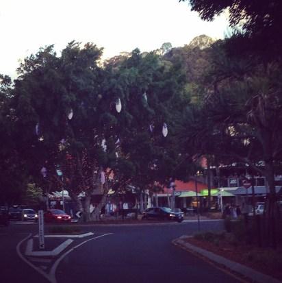 Noosa Tree Of Life (2)
