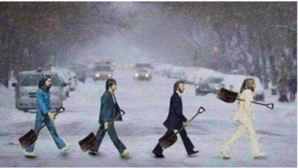 Snow-Beatles