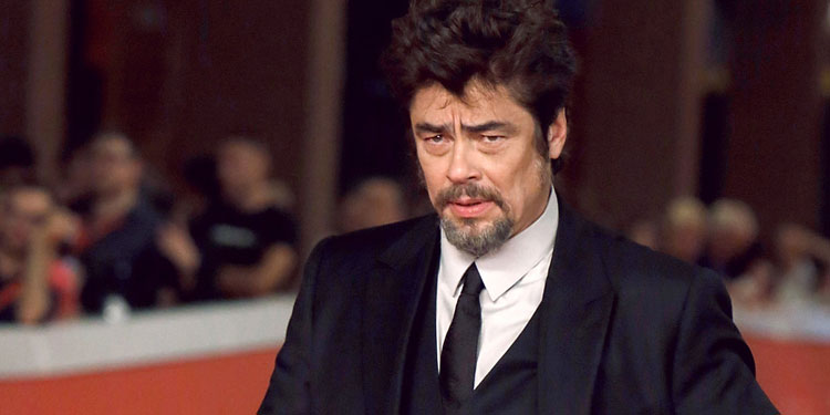 Benicio del toro archives big gay picture show