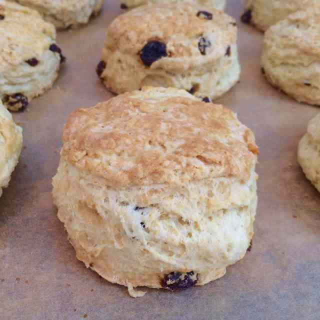 traditional irish scone recipes, raisin scones, irish scones, Irish recipes, traditional irish scone recipe, irish scones, scones, Irish raisin scones, traditional irish recipes, saint patricks day recipes, bread, quick breads, traditional recipes, Recipes, baking recipes, dessert, desserts recipes, desserts, cheap recipes, easy desserts, quick easy desserts, best desserts, best ever desserts, simple desserts, simple recipes, recieps, baking recieps, how to make, how to bake, cheap desserts, affordable recipes, Gemma Stafford, Bigger Bolder Baking, bold baking, bold bakers, bold recipes, bold desserts, desserts to make, quick recipes