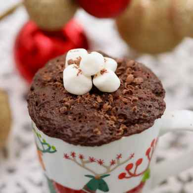 Hot Chocolate Mug Cake (Egg Free)