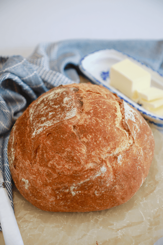 My whole wheat bread recipe, which is a no-knead bread recipe for beginners, baked off and showing the outer crust.