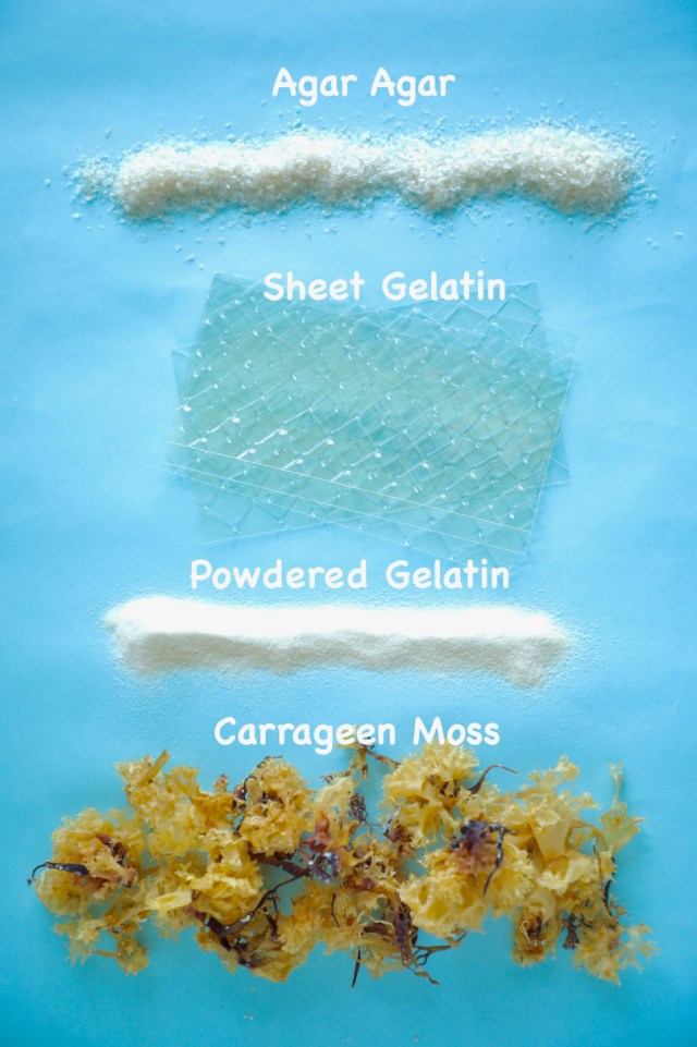 The different kinds of gelatin, like agar agar, irish moss, carrageen moss, sheet gelatin, and powdered gelatin.